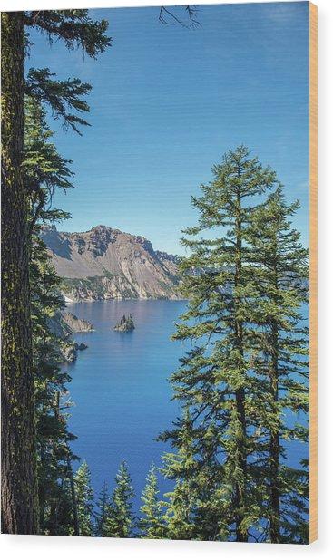 Serene Pines Wood Print