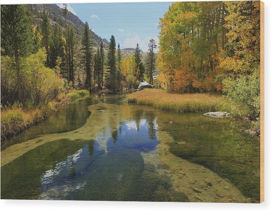 Serene Stream Wood Print