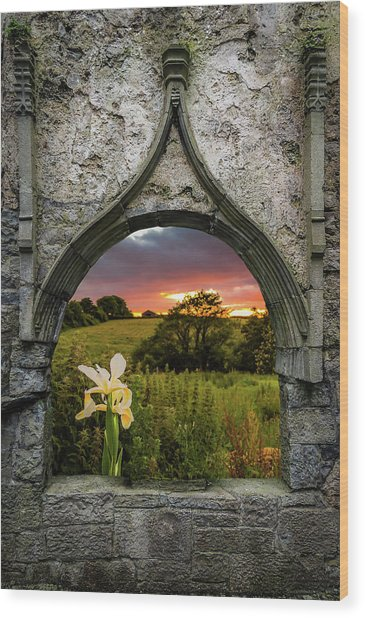 Wood Print featuring the photograph Serene Sunset Over County Clare by James Truett