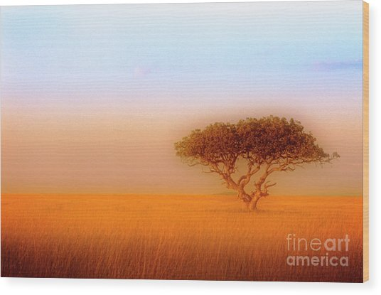 Wood Print featuring the photograph Serengeti by Scott Kemper