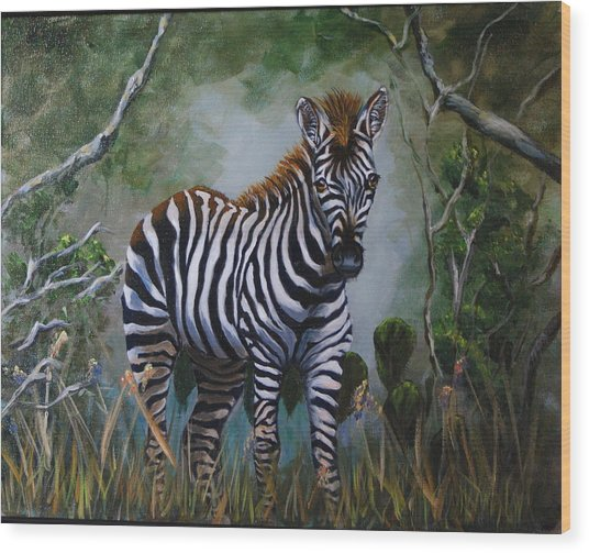 Serengeti Zebra Wood Print