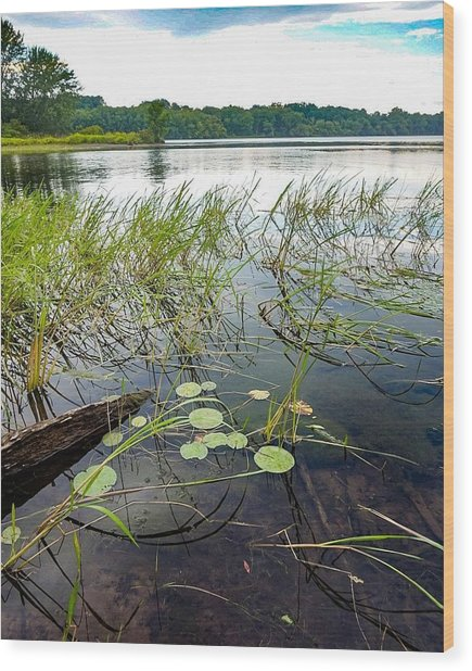 Serenity Along The Hudson Wood Print