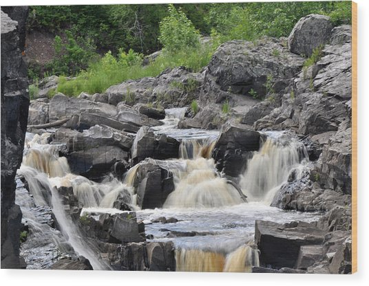 Serenity At Jay Cooke Wood Print by John Ricker