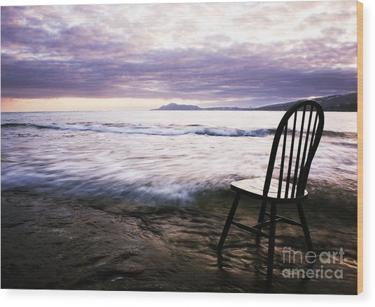 Serenity At Portlock Wood Print by Charmian Vistaunet