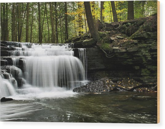 Wood Print featuring the photograph Serenity Waterfalls Landscape by Christina Rollo