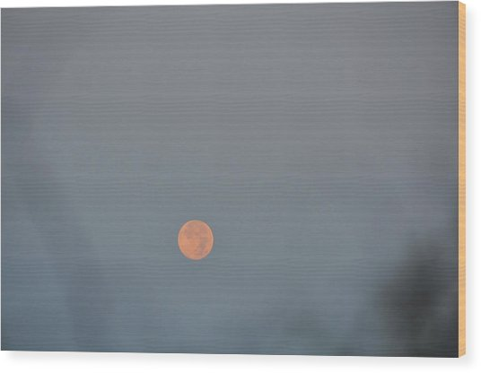 Setting Moon Wood Print by JAMART Photography