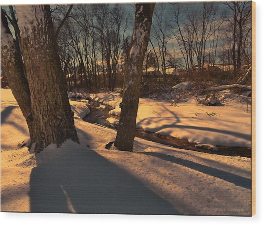 Setting Sun On A Winters Day Wood Print