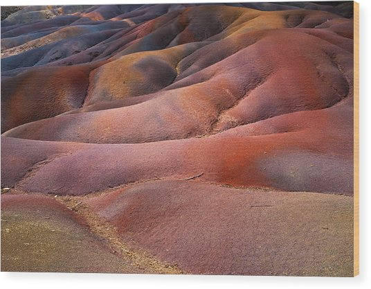 Seven Colored Earth In Chamarel 8. Series Earth Bodyscapes. Mauritius Wood Print
