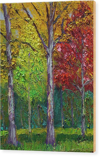 Sewp Fall Wood Print by Stan Hamilton