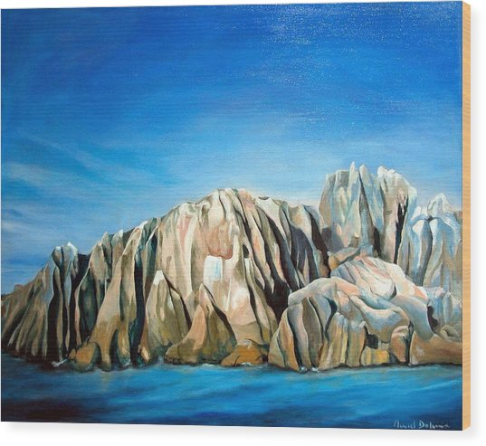 Seychelles Wood Print by Muriel Dolemieux