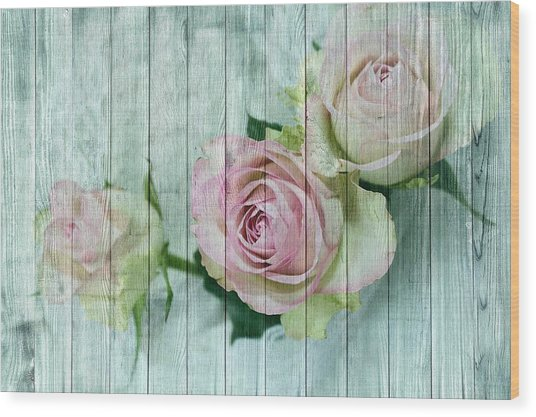 Shabby Chic Pink Roses On Blue Wood Wood Print