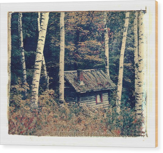 Shack And Birch Trees Wood Print