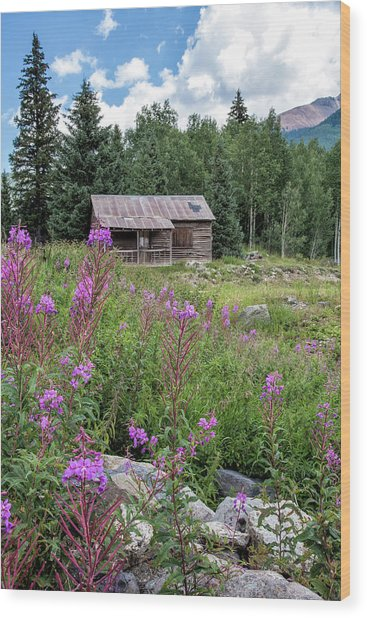 Shack With Fireweed Wood Print