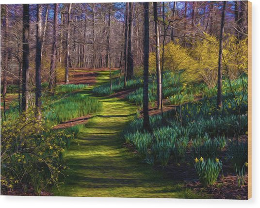 Shaded Spring Stroll Wood Print
