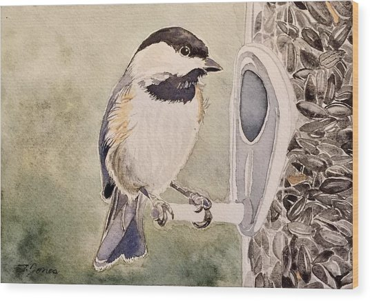 Shades Of Black Capped Chickadee Wood Print