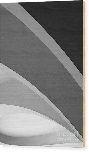 Shades Of Grey Wood Print by Hideaki Sakurai