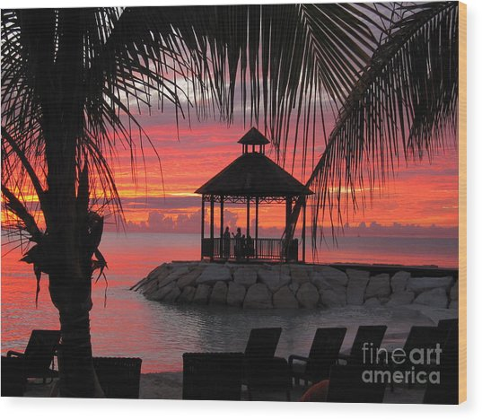 Shades Of Paradise 2 Wood Print by Addie Hocynec