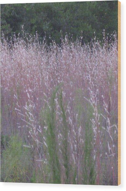Shades Of Summer Grass Wood Print