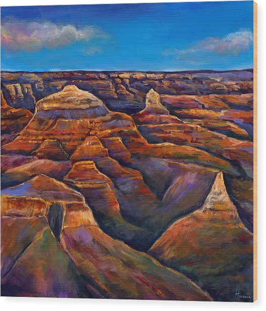 Shadow Canyon Wood Print by Johnathan Harris