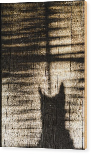 Shadow Cat Wood Print