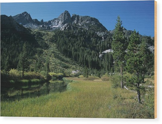 Shadow Creek - Mount Ritter And Reflections Wood Print