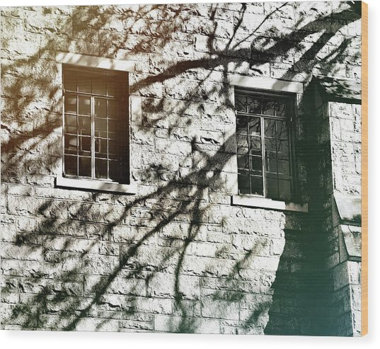 Shadow Days Wood Print by JAMART Photography