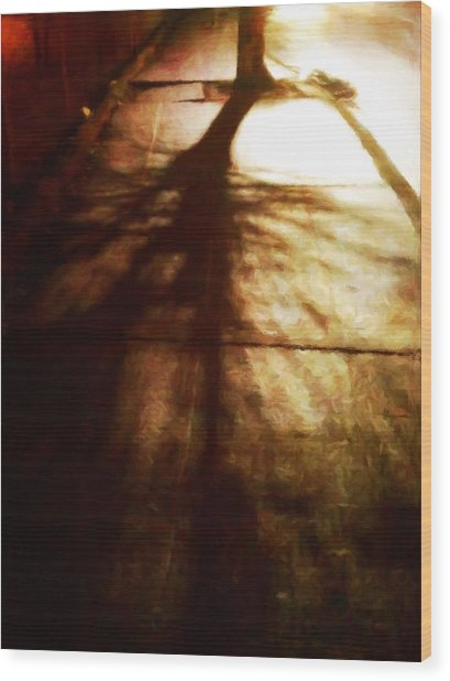 Shadow Of No Doubt Wood Print