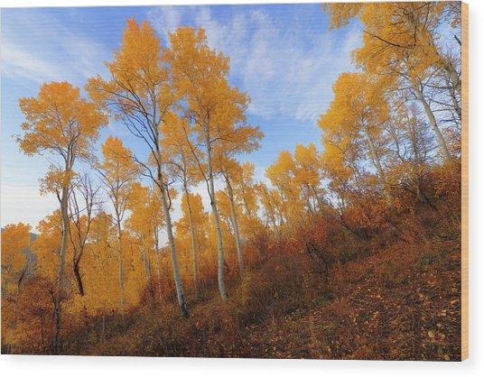 Shadowed Hill Wood Print
