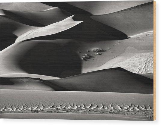 Shadowland Wood Print by Izidor Gasperlin
