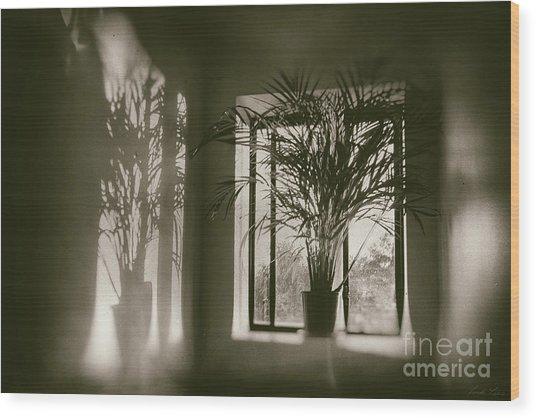 Shadows Dance Upon The Wall Wood Print