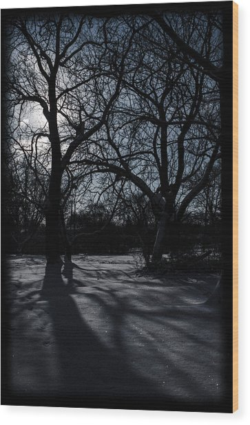 Shadows In January Snow Wood Print