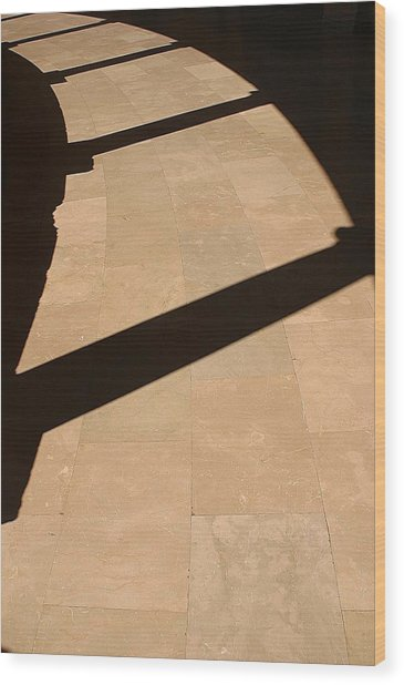 Shadows Of The Past Wood Print by Jez C Self