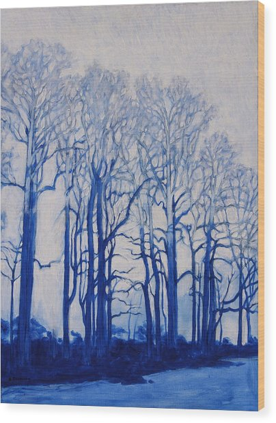 Shadows Of Winter Wood Print