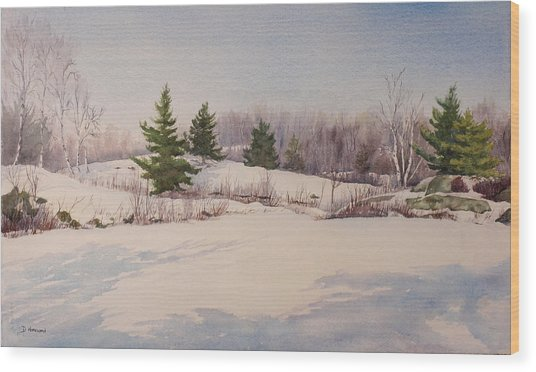 Shadows On Snow In The Canadian Shield  Wood Print by Debbie Homewood