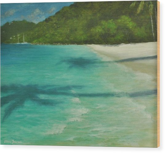Shadows Over Magens Bay By Alan Zawacki Wood Print