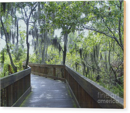 Shady Boardwalk Wood Print