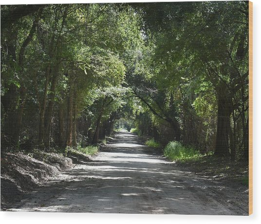Shady Tree Lined Carpenter Road Wood Print by rd Erickson