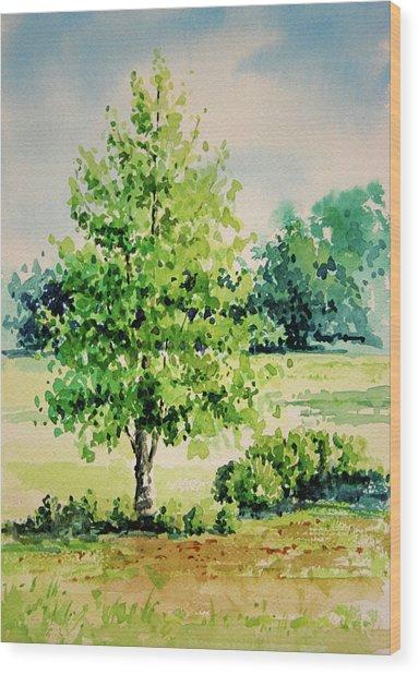 Shalom Park Watercolor Wood Print