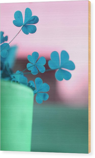 Shamrock Pot V Wood Print