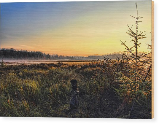 Sharing A September Sunrise With A Retriever Wood Print