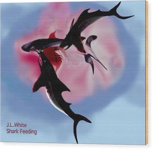 Shark Feeding Wood Print by Jerry White