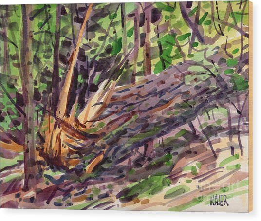 Shattered Pine Wood Print by Donald Maier