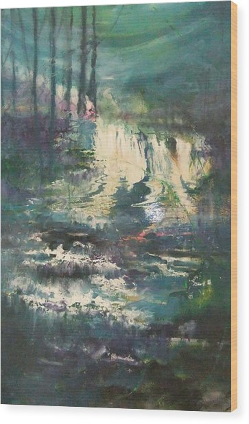 Sheen Falls Wood Print by Joyce Garvey