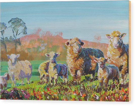 Sheep And Lambs In Devon Landscape Bright Colors Wood Print
