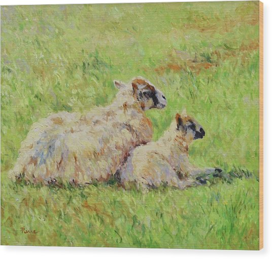 Sheep In The Spring Time,la Vie Est Belle Wood Print