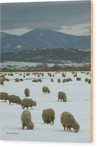 Sheep On Winter Field Wood Print