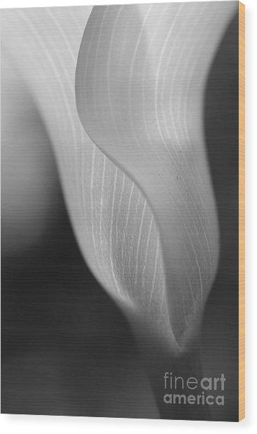 Sheer Elegance Wood Print by Beth Buelow