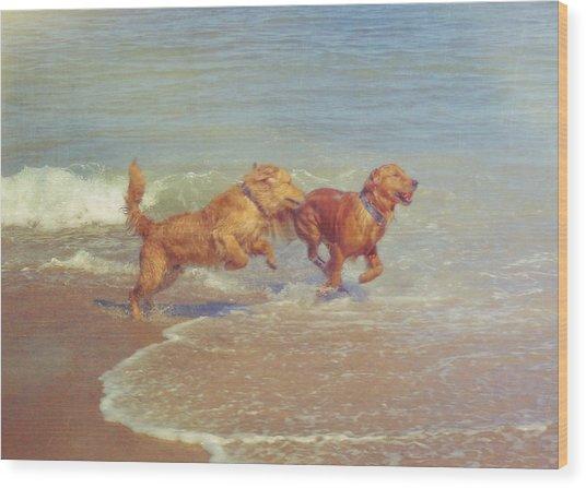 Sheer Joy Wood Print