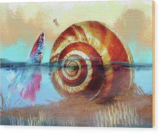 Shell Fish Wood Print