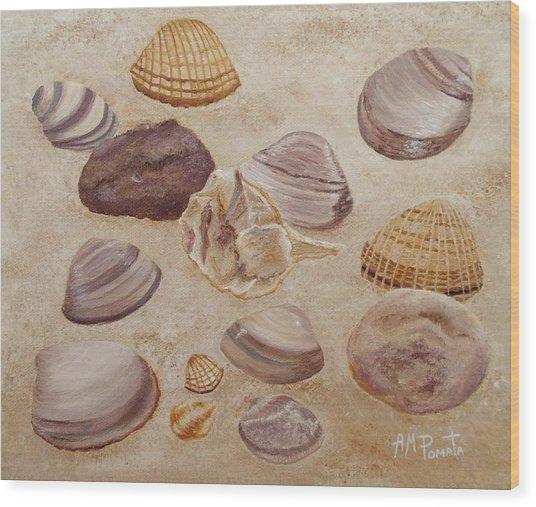 Shells And Stones Wood Print